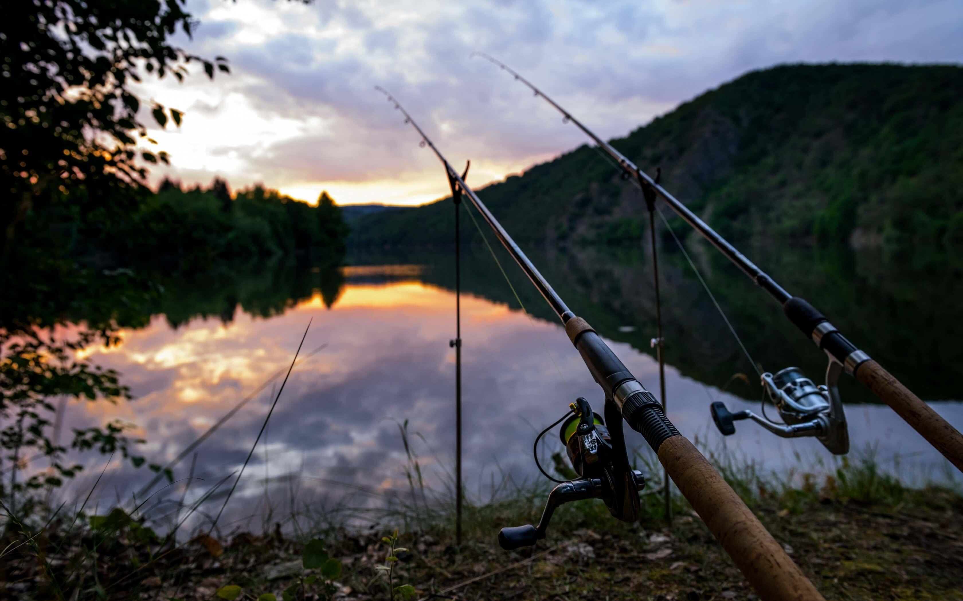 Картинки на рыбалке на заставку, открытки
